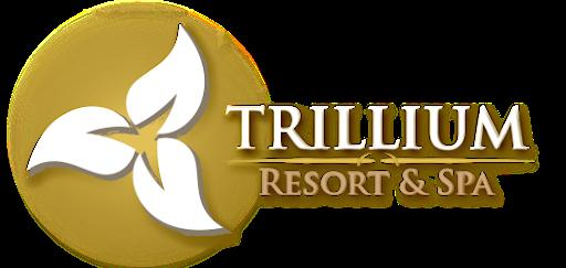 Trillium Resort - DJ MasterMix